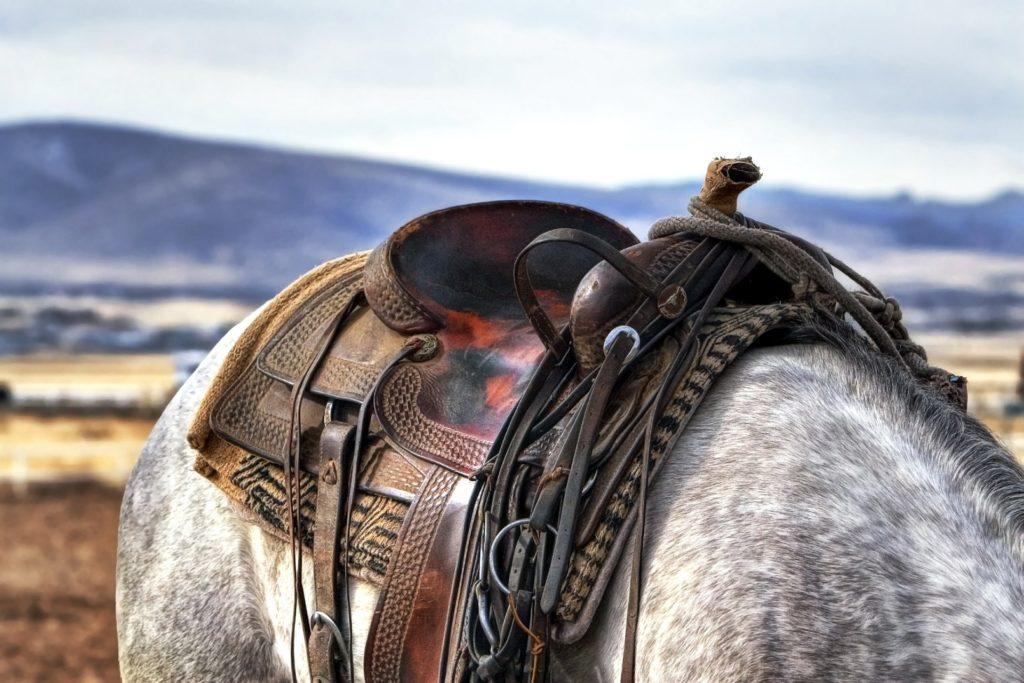 Vecais vīrs un viņa zirgs